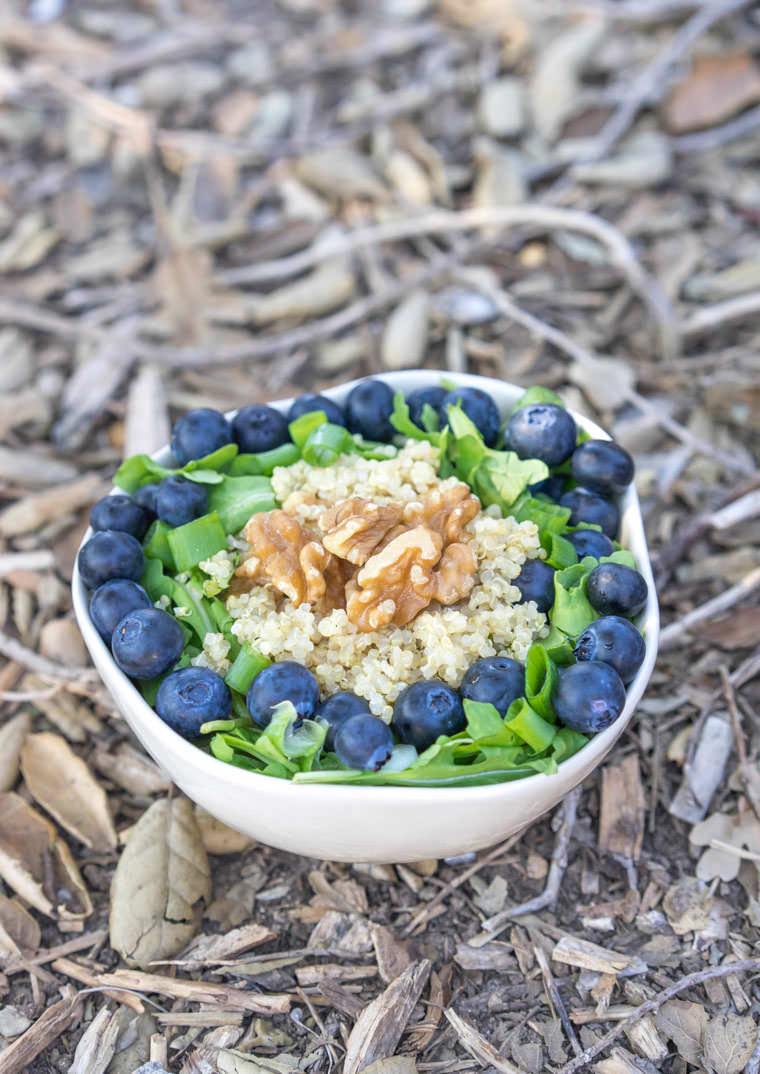 forager-bowl-ground